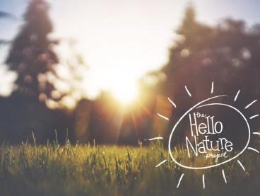 Hello Nature sunshine 2